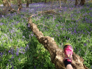 Beautiful bluebell woods at Southwick on today's trail #shoeselfie !